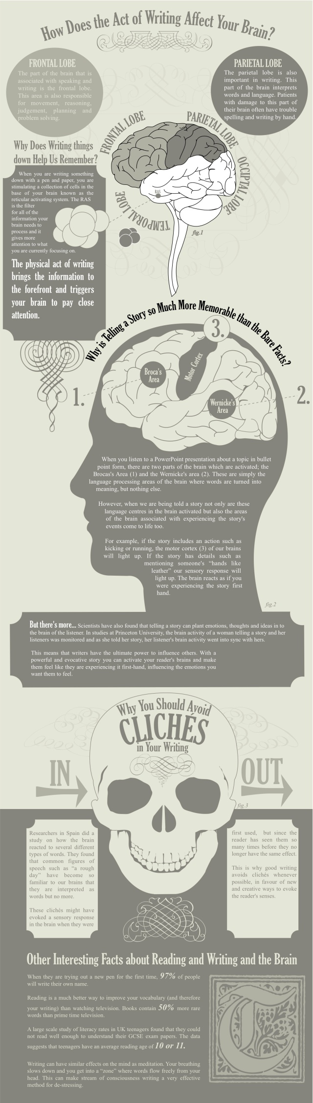 amazing-facts-about-writing-and-the-brain